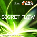Sauer&Troeger Secret Flow